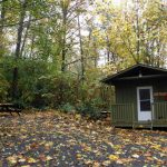 Sherwood Hut | Camp McLanlin